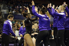 2017-02-11 UW vs ASU 90 (Susie Boyland) Tags: gymnastics uw huskies washington