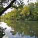 Stones River (195 / 365)