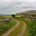 Road through the Burren