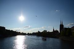 Odra from Tumski Bridge, Wrocław, Polska