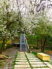Le fil vert à Floirac - parc des Coteaux