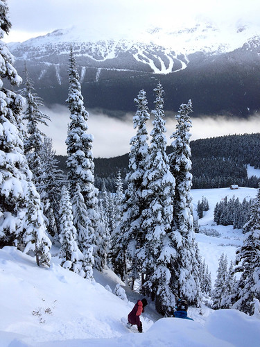 Beautiful powder day Whistler