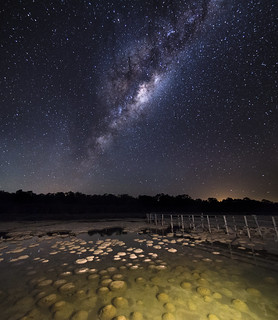 Milky Way Rising over Lake Clifton