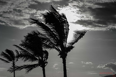 Hawaii Sunset (Anthony Au) Tags: nature hawaii nikon kihei nikon80200 nikond700
