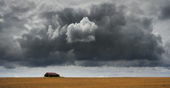 Stormy Barn (wentloog) Tags: uk sky cloud storm field wales barn canon landscape eos britain farm wheat steve cymru cardiff vale crop caerdydd glamorgan 5d welsh agriculture valeofglamorgan sthilary cowbridge garrington wentloog stevegarrington