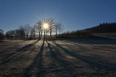 D71_0173A (vkalivoda) Tags: ráno morning sun light paprsky ray slunce jedovnice budkovan outdoor