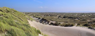 Tracks on the dune ridge leading to the scout on Texel island