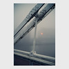 albert bridge (pete gardner) Tags: albertbridge chelsea london uk viewtobattersea afoggyday inlondontown jupiter3 50mmf15