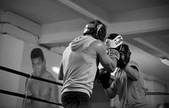 (_Pek_) Tags: boxe indomitaboxe roma muhammadali lacompagniadellafoto