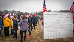 2017.01.21 Women's March Washington, DC USA 2 00153