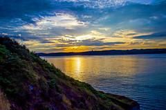 Rade de Brest (nolyaphotographies) Tags: crozon roscanvel brest iroise mer rade finistere bretagne france nikon sea wave sun light sunrise couleur bleu nuage ocean falaise clift bruyere fleur nature europe ciel