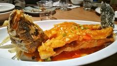 Dinner (Alfred Life) Tags: 初三 參合院 晚餐 dinner 徠卡 華為 华为 summarit asph leica leicaduallenses summarith12227asph plus p9 huawei huaweip9plus summarith12227 徕卡 p9p
