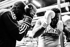 La Boxe, Boxing Beats, Aubervilliers, France (johann walter bantz) Tags: xf23mmf14r xpro2 fujifilm sportphotography training fitness sport sportler boxer black blackwhite monochome banlieueparisienne aubervilliers 93 boxingbeats clubdeboxe boxclub boxing boxe