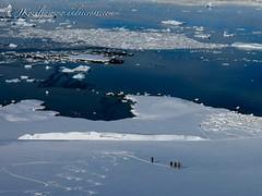 Skiing powder in Antarctica