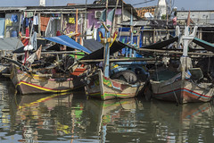 A riot of colour (tmeallen) Tags: traditionalboats oldfishingcraft colourful riotofcolour laundry oldhouses historicharbour reflections sundakelapa innerharbour jakarta indonesia