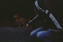 Primer Carrete Revelado. Werlisa Club Color (Sr_Bertog) Tags: gato madrid calle acariciar werlisaclubcolor werlisa