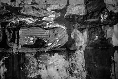 "365-25 : ""Tearing Down the Walls"" (Danko8321) Tags: construction wall bricks blackandwhite bw bn textures texture nikonphotography nikond600 nikondslr nikon project365 projectphoto365 photoadayproject photoeveryday photoaday photoadaychallenge 365photoaday 365days"