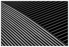Diagonal (frodul) Tags: übergang expogelände hannover abstrakt minimalismus textur sw bw monochrom einfarbig niedersachsen deutschland diagonale expo detail detailaufnahme