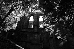 enchant (Landesfahrer) Tags: art kunst natur ruine burg oybin zauber