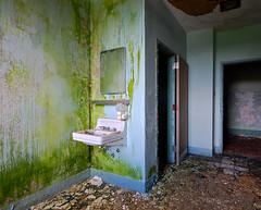 Myeloperoxidase (jgurbisz) Tags: green abandoned pennsylvania decay nj pa asylum vacantnewjerseycom jgurbisz embreevillestatehospital