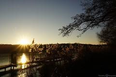 Seenlandschaft -  Krickenbecker Seen (photographie by jacobiclever) Tags: sonne sonnenschein sonnenuntergang sundown lake see seen krickenbecker landschaft landscape