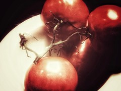 Still life in red (J.C. Moyer) Tags: tomatoes tomatovine tomato plate colour color vegetables vegetable food healthy red motorolamotog4plus rustic kitchen
