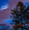 Moon and Venus (E. Aguedo) Tags: moon venus ngc night long exposure pine tree clouds new england ri warwick