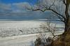 Frozen Lake Michigan (Tom Gill.) Tags: dune ice frozen winter driftice shelfice lake lakemichigan greatlakes indiana indianadunesnationallakeshore