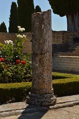 DSC_2493 (tesseracultural) Tags: itálica romano roman yacimiento romansite arqueológico archaeologic sevilla españa spain