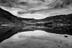 Gwynant (AJP1965) Tags: lake still calm refelction bw snowdonia gwynant