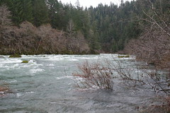 A rather boisterous river (rozoneill) Tags: umpqua national forest north trail mott panther tioga segment oregon hiking backpacking douglas county glide idleyld park roseburg