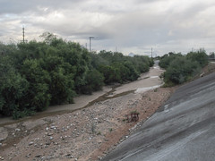 It rained in the night so Tucsonians awoke to find that the Julian Wash had water and shopping buggies in it. (Tim Kiser) Tags: 2015 20151007 arizona arizonalandscape img7404 julianwash julianwashgreenway october october2015 pimacounty pimacountyarizona tucson tucsonarizona tucsonlandscape abandonedshoppingbuggy abandonedshoppingcart arroyo arroyolandscape channelization channelizedcreek channelizedriver channelizedstream concreteslope creeklandscape electriclines ephemeralriver ephemeralstream flowingwater landscape morninglandscape overcast overheadelectriclines overheadpowerlines powerlines riparianarea riparianplants riverengineering riverlandscape shoppingbuggy shoppingcart smallstream southarizona southsideoftucson southeastarizona southeasternarizona southernarizona southerntucson streamengineering streamlandscape urbanlandscape view wash unitedstates