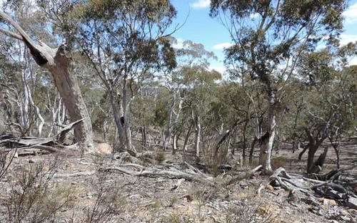 251 Nerrimunga Creek Road, Windellama NSW 2580