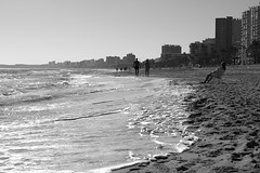 not really summer (pepe amestoy) Tags: blackandwhite elcampello spain fujifilm xe1 carl zeiss t planar 250 leica m mount