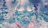 EXPERIMENT #54 (Captain Nots) Tags: experimental negative doubleexposure colors blue pink creepy glow portrait silhouette portraiture photoshop experiment color flowers floral overlay background design graphic alien otherworldly ethereal