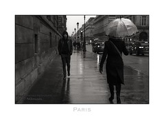 Paris n°118 - The Look (Nico Geerlings) Tags: ruederivoli louvre rain raining rainy gloomy umbrella paris parijs france streetphotography ngimages nicogeerlings nicogeerlingsphotography museum museedulouvre tuileries palaisroyal