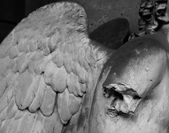 A broken arm and a wing (Aramisse) Tags: blackandwhite italy friedhof broken cemetery angel europe italia arm noiretblanc ange wing bologna engel italie bras aile cimetire bris certosa cemeteryart aramisse