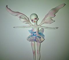 DollZone Iris (ok2la) Tags: 2 wings breasts doll tiny crop bjd roger dz dollzone img2015051801929