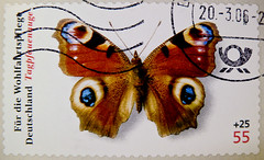 great stamp Germany 55c+25c (Aglais io; Tagpfauenauge, European Peacock, , Paon du jour, Dagpauwoog, Inachis io, occhio di pavone, , Pfgelga,  , nappali pvaszem) timbres Allemagne     sellos Alemania selos Alemanha 55+25c (thx for sending stamps :) stampolina) Tags: butterfly postes germany deutschland eyes colorful meer stamps stamp papillon augen timbre allemagne bunt dagpauwoog duitsland schmetterling selo marka allemand sello sellos briefmarken pulu briefmarke  tagpfauenauge inachisio francobollo selos timbreposte bollo  timbresposte paondujour europeanpeacock  pfgelga frimaerke lepkk timbru nappalipvaszem  occhiodipavone   aglaisio  perangkoperangko