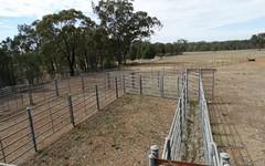 . Urana Road, Walbundrie NSW