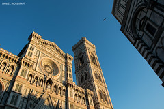 Flying by (Daniel Moreira) Tags: firenze florence florença toscana tuscany italia italy itália giottos bell tower attedrale di santa maria del fiore battistero san giovanni pigeon pomba