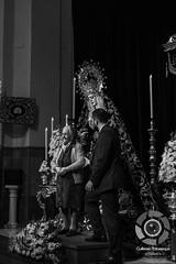 Galería fotográfica del besamanos a Nuestra Señora de la Encarnación. Hdad de San Benito. (Guillermo Palomeque) Tags: besamanos san benito encarnación sevilla