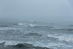 Метель (klgfinn) Tags: balticsea blizzard coast landscape sea shore skyline snow snowfall storm water wave winter балтийскоеморе берег вода волна горизонт зима море пейзаж снег снегопад шторм