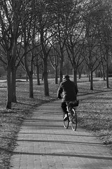 IMG_3560-- (Karina Edel) Tags: outside monochrome black white cyclist bicycle potato karina photography spontanious street old man timer