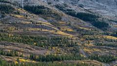 Mountain side (virgil martin) Tags: mountains landscape peterlougheedprovincialpark alberta canada panasoniclumixfz1000 oloneo gimp