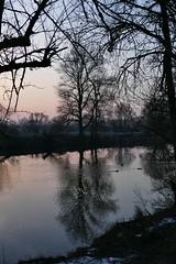 Sonnenuntergang am Fluss III (deetaah) Tags: silhouette bäume trees fluss river ufer riverside