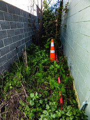 No Where Left to Run (Steve Taylor (Photography)) Tags: pole alley building cone road traffic newzealand nz southisland canterbury christchurch weeds perspective