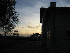 IMG_0913 (sharandadam) Tags: france chateauladominique winery saintémilion