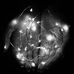 361/366 - Ardor (Esko) Tags: 2016 december 366 365 366challenge 366project 365challenge 365project stringlights led blackandwhite minimal