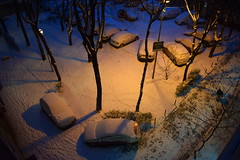 Snow parks here. (mi ne volimo šalu) Tags: winter snow city citylife cityscape circle car parking nightshot night twilight tree urban beograd blue colour illumination idyllic perspective serbia white dusk he